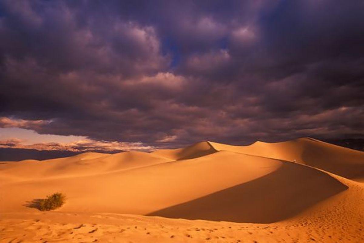 desert-ccflcr-Fikret-onal