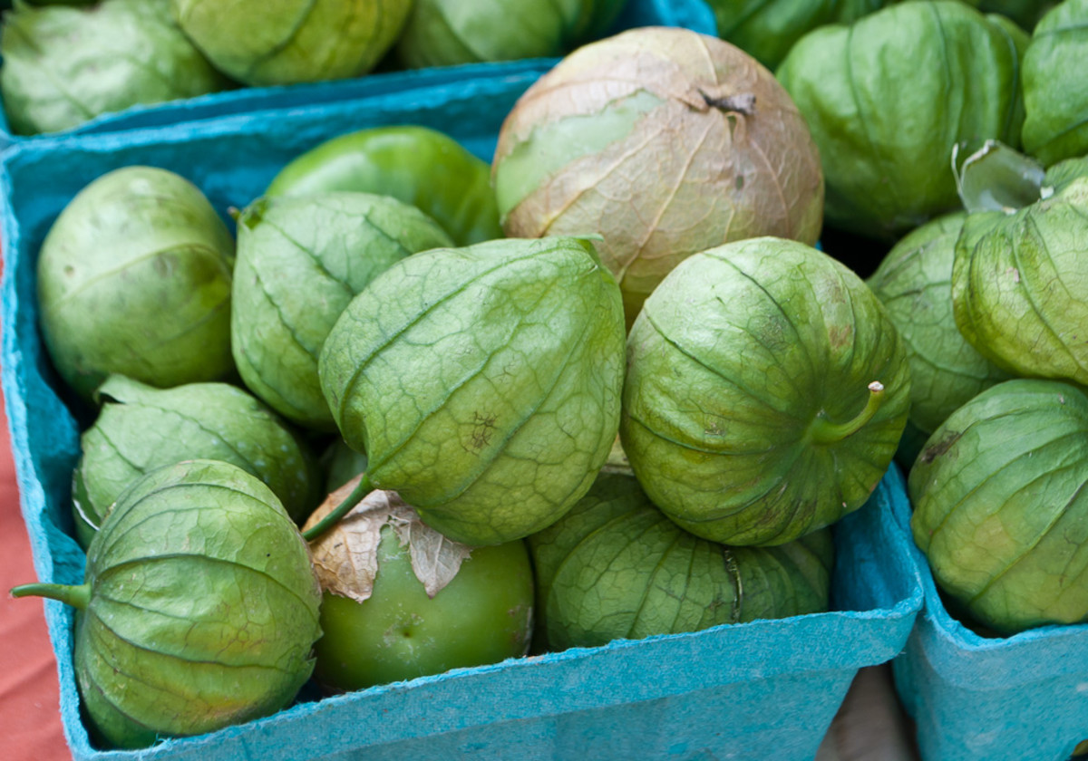 What Are Tomatillos And Green Tomatoes Same Or Different