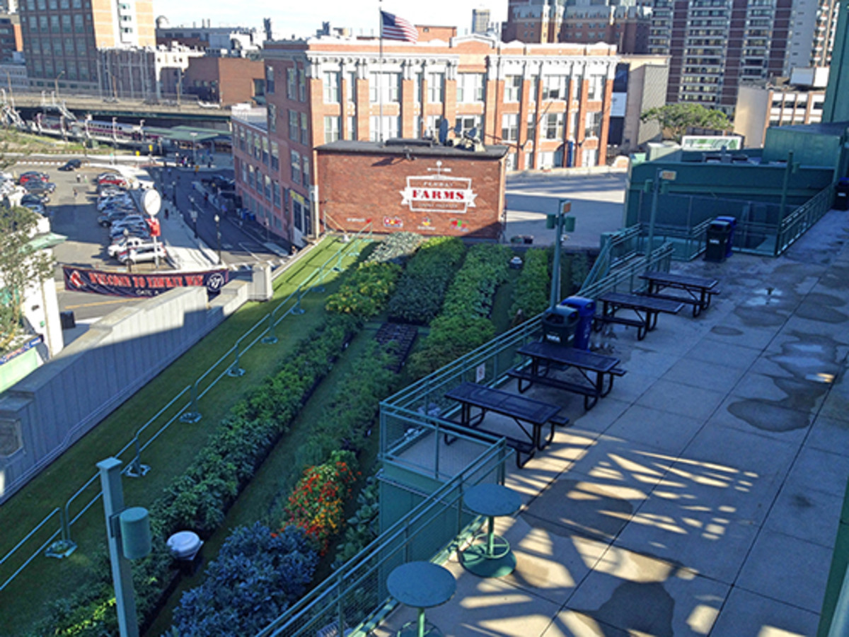 Green City Growers installed Fenway Farms at Fenway Park