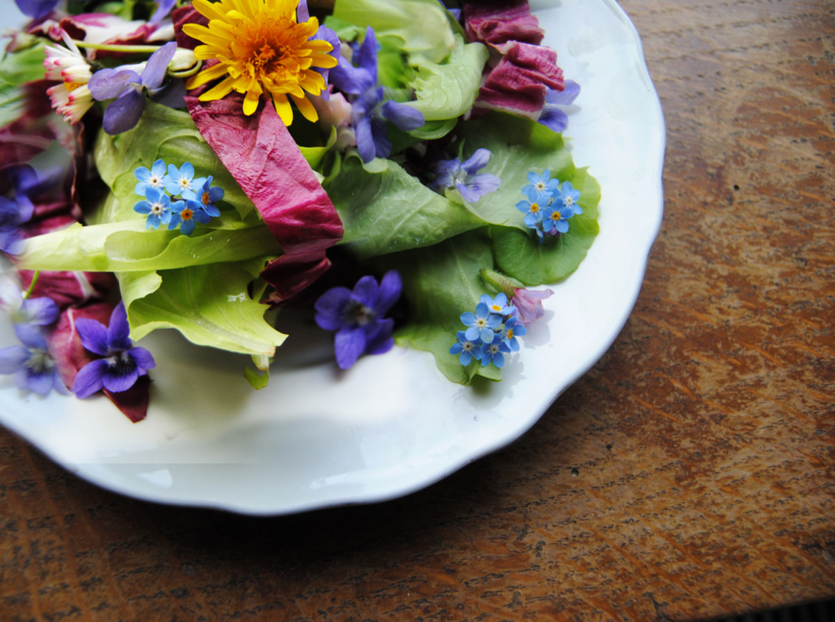edible flowers are delicious and beautiful