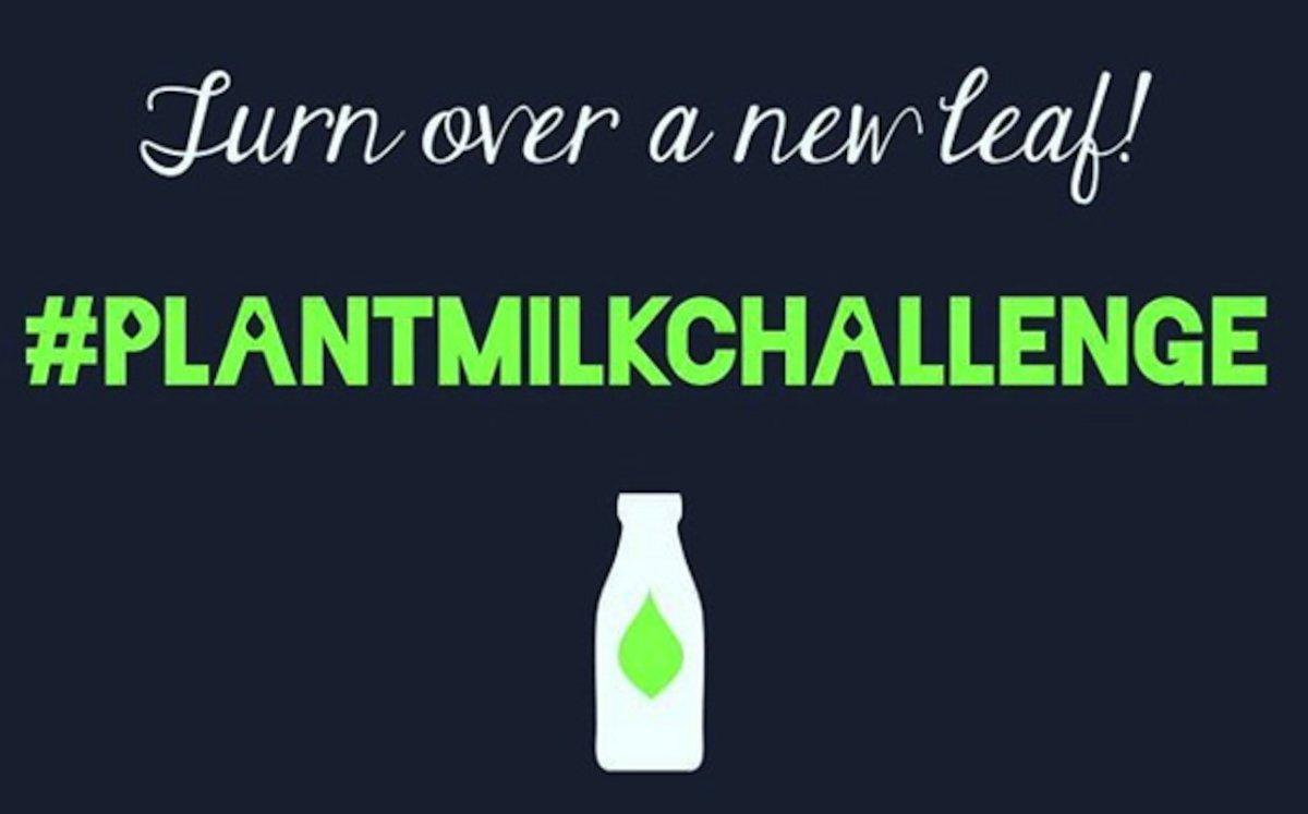 #PlantMilkChallenge