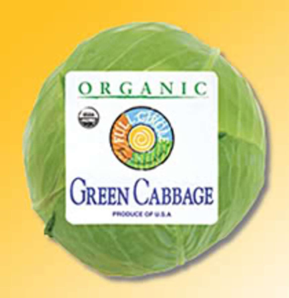 organic-cabbage1
