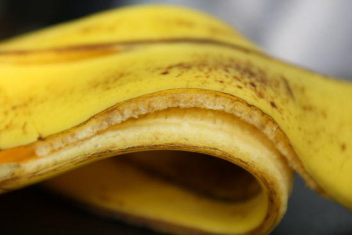 banana-ccflcr-claireknights