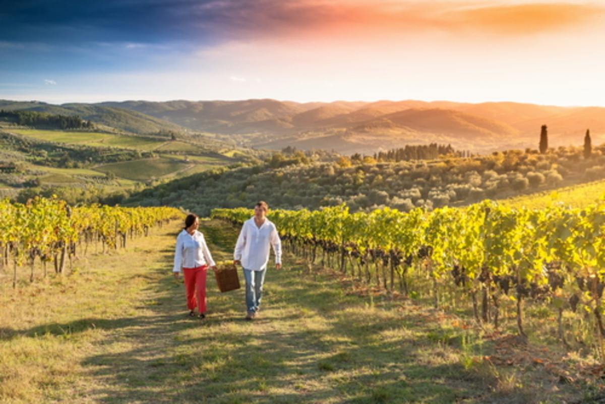 4 ways climate change alters the wine you love
