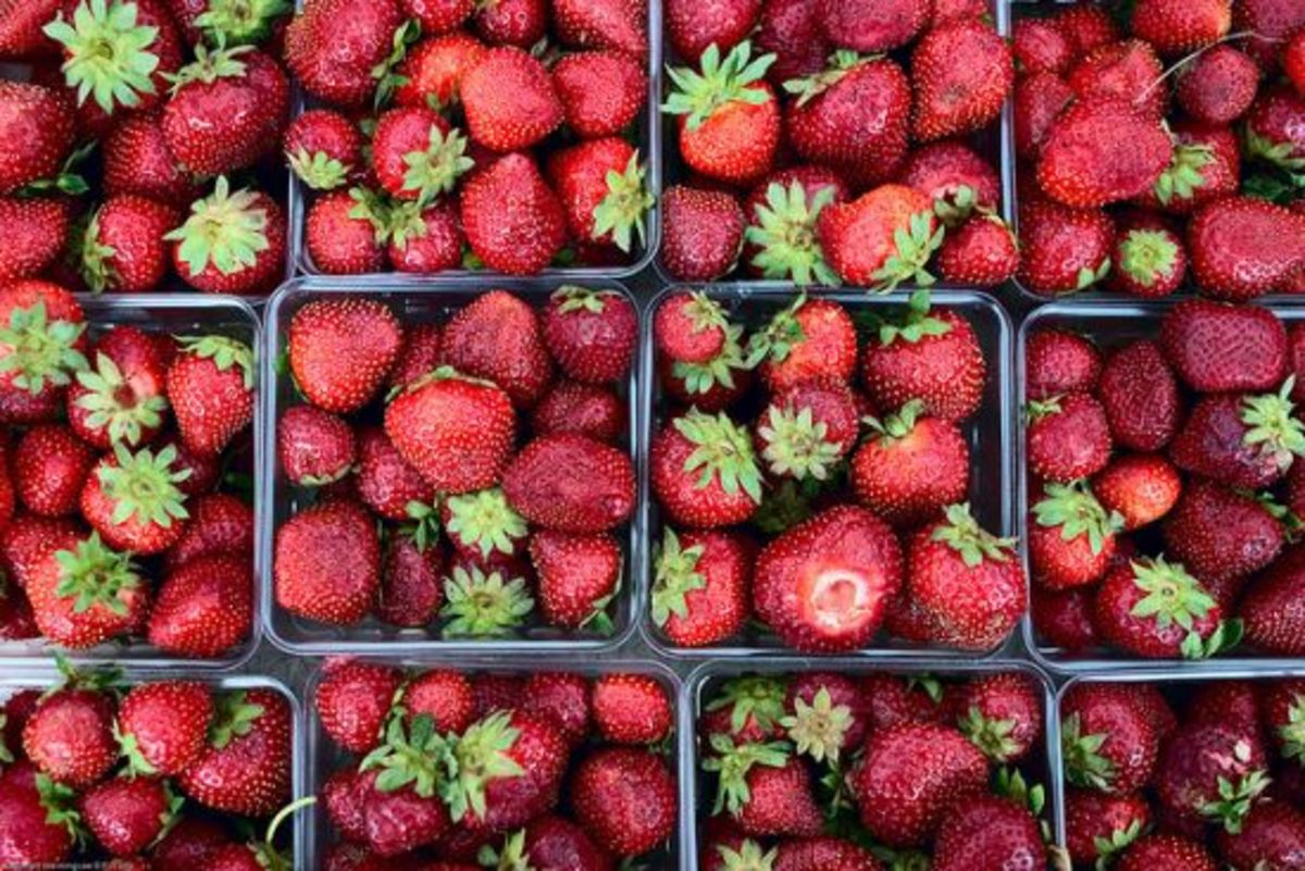 strawberries-ccflcr-See-mingLee1