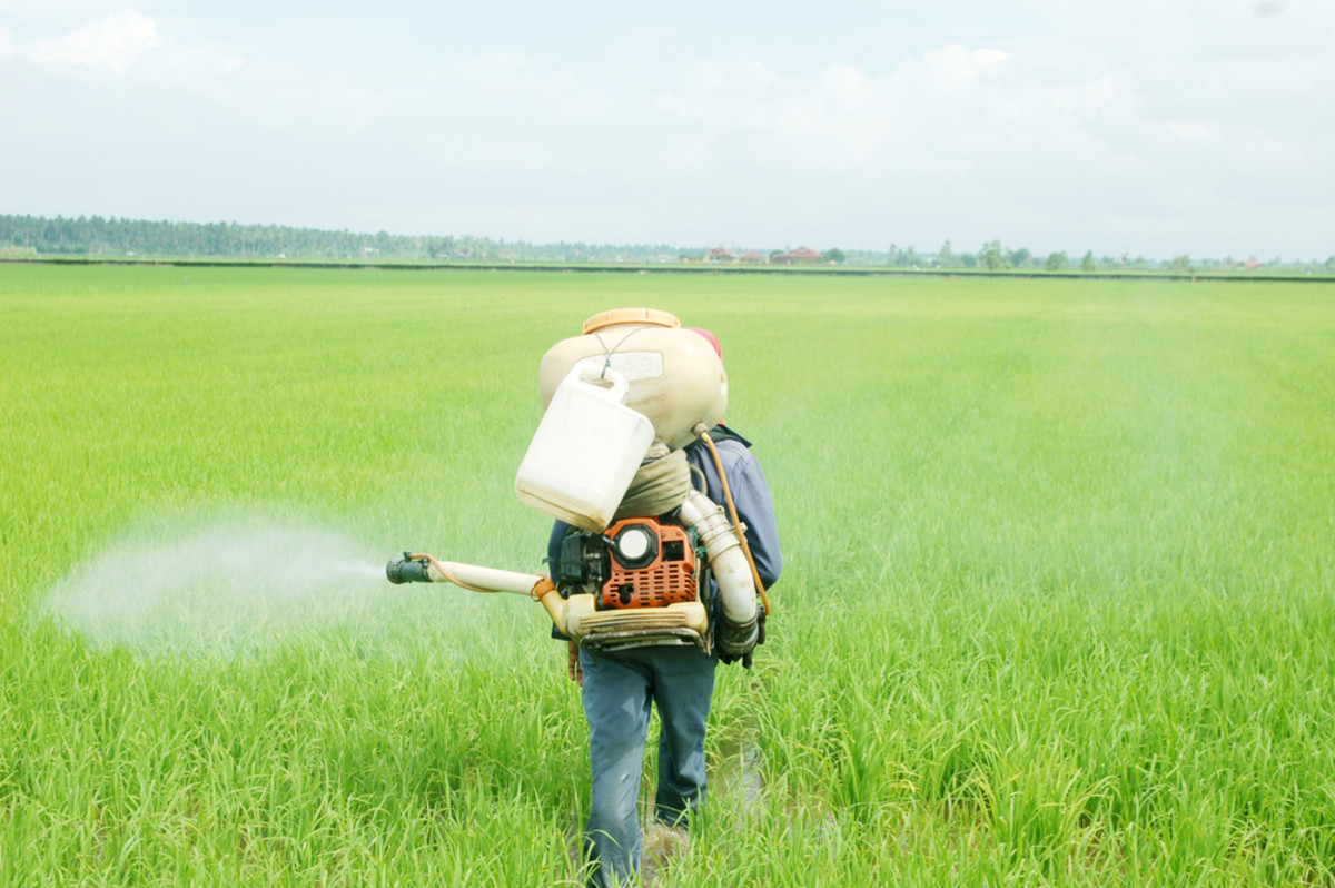 EPA Announces Tougher Rules to Protect Farm Workers from Pesticide Poisoning