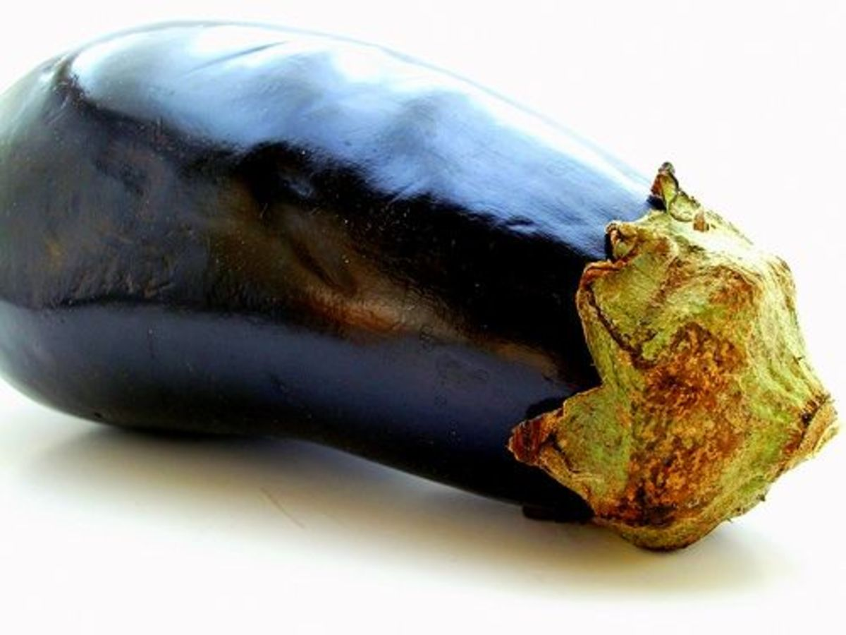 eggplant-ccflcr-albastrica-mititica