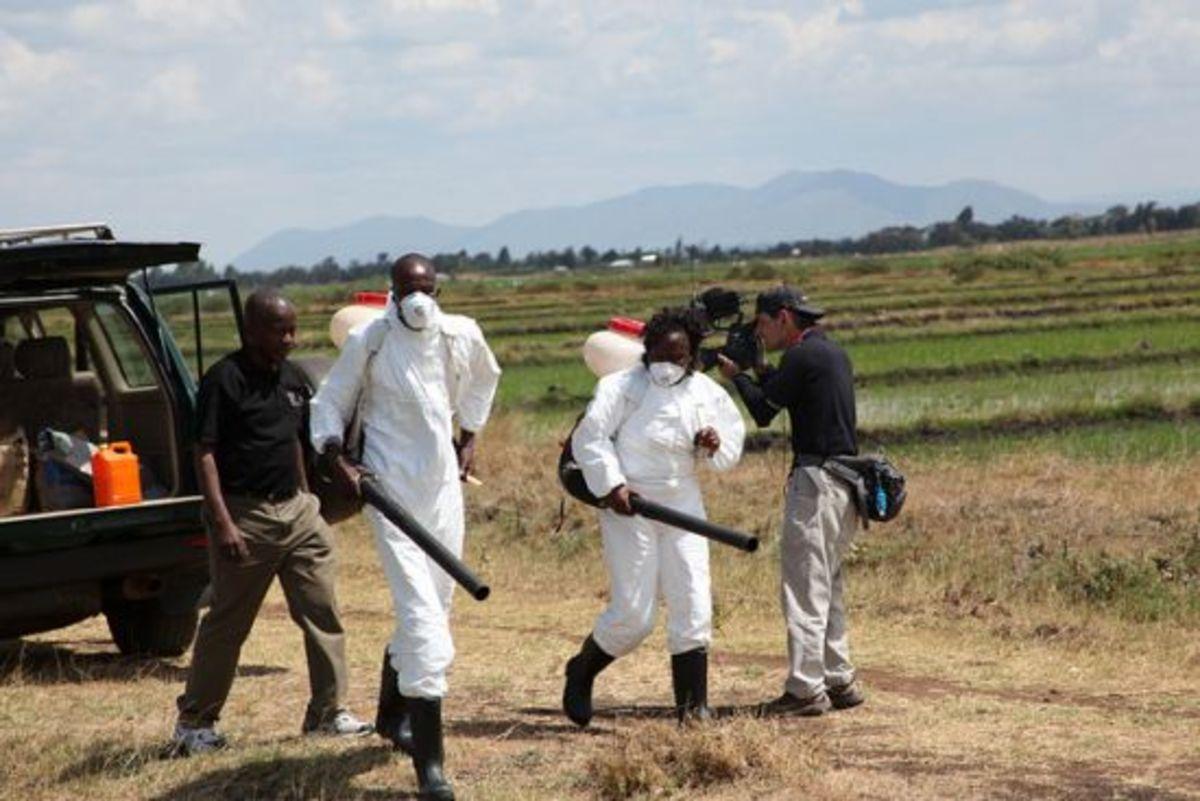 ddt_spraying_africa_GEF_cclfr