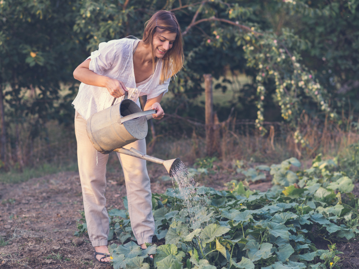 Is Gardening the New Prozac?