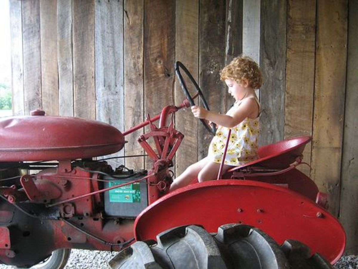 girl_on_tractor_ccfler_mollypop