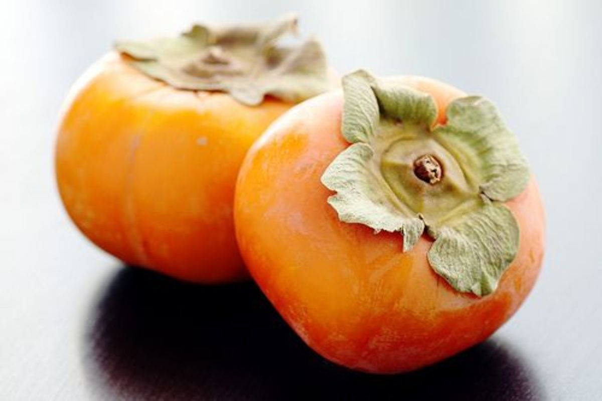 persimmons-ccflcr-little-blue-hen