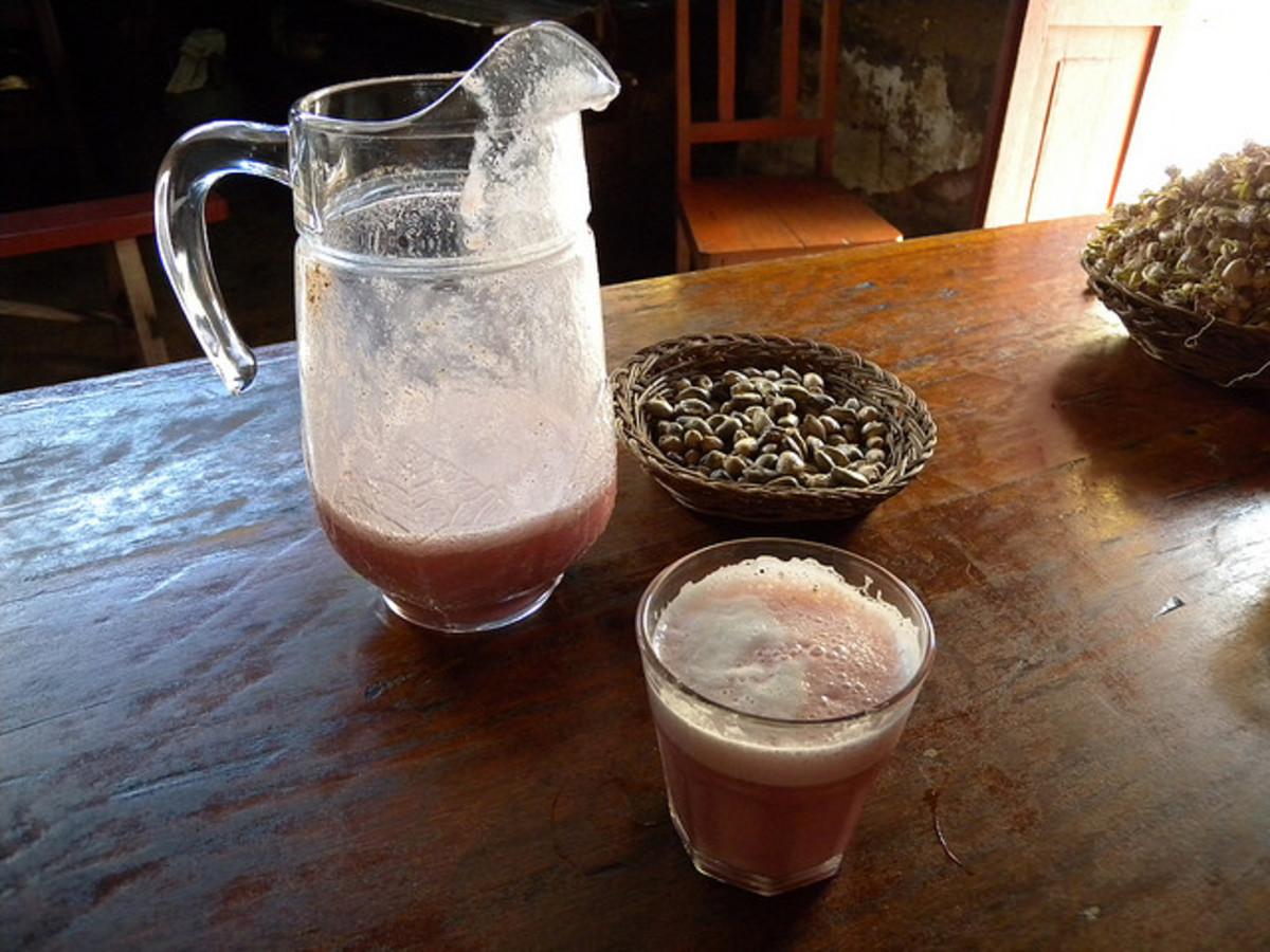 peruvian cuisine Chicha