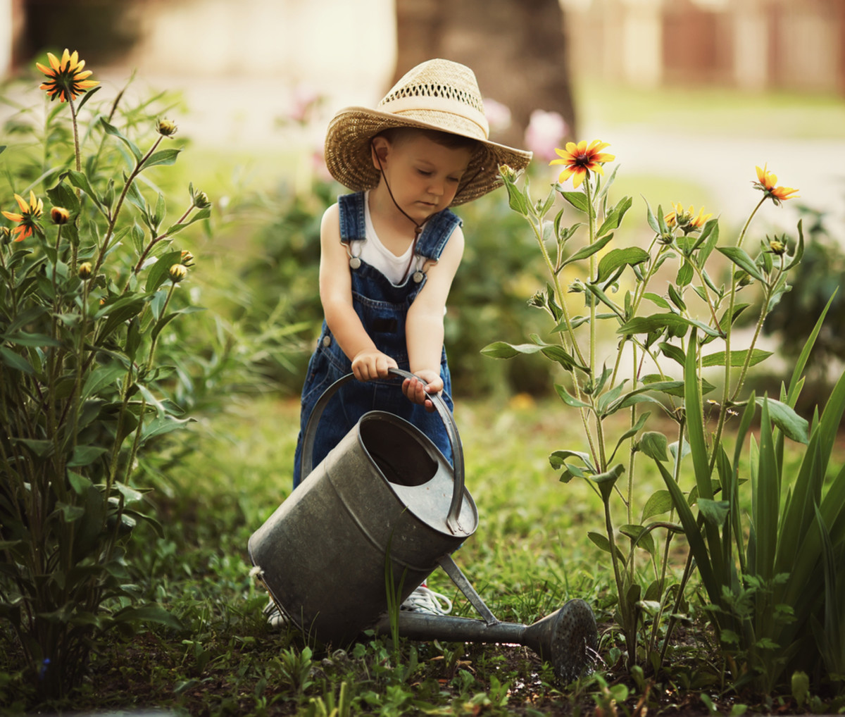 5 Wise Watering Techniques for Late (Late!) Summer Gardens
