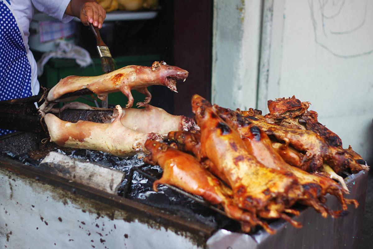 peruvian cuisine cuy