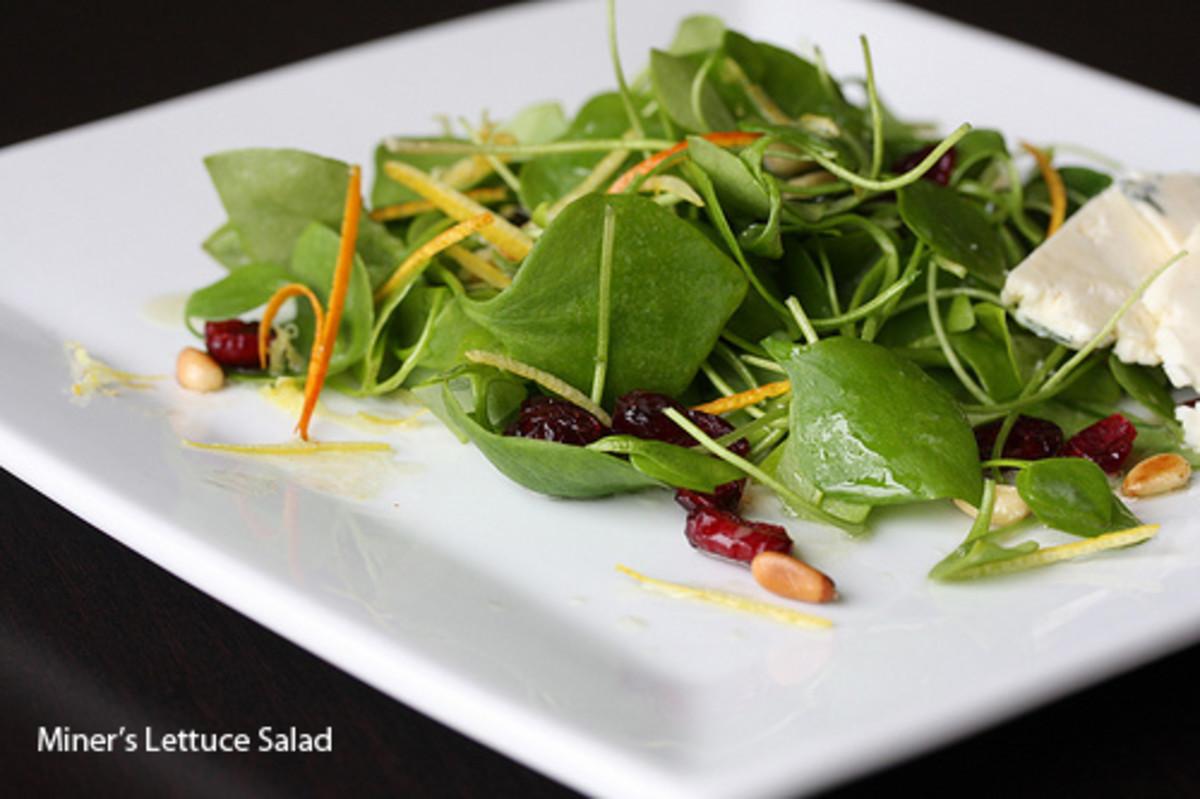 miners-lettuce-salad3