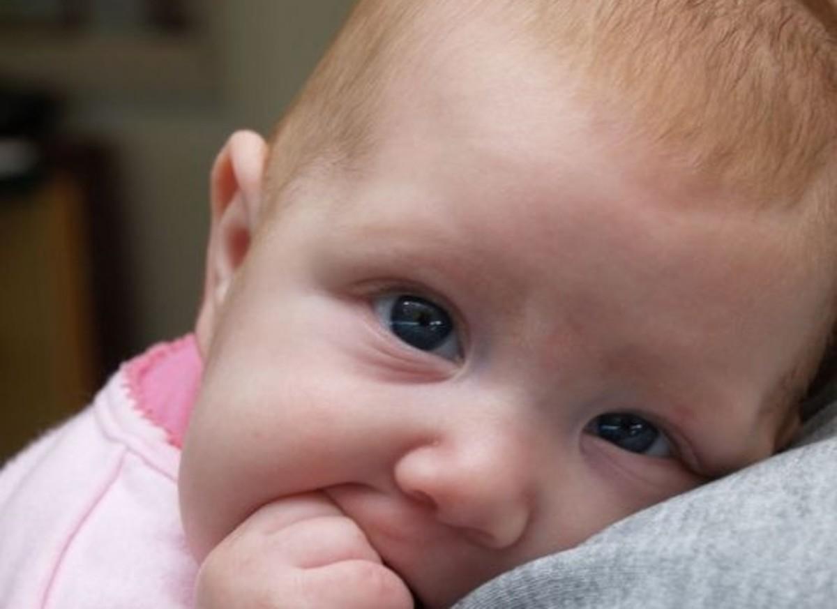 babies-ccflcr-paparutzi