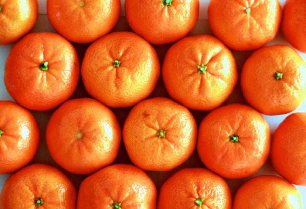 clementine-ccflcr-jeremyjenum