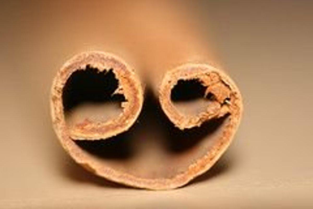 cinnamonstick