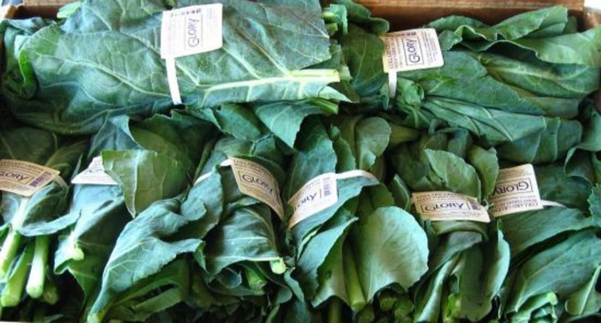collardgreens-ccflcr-gloryfoods
