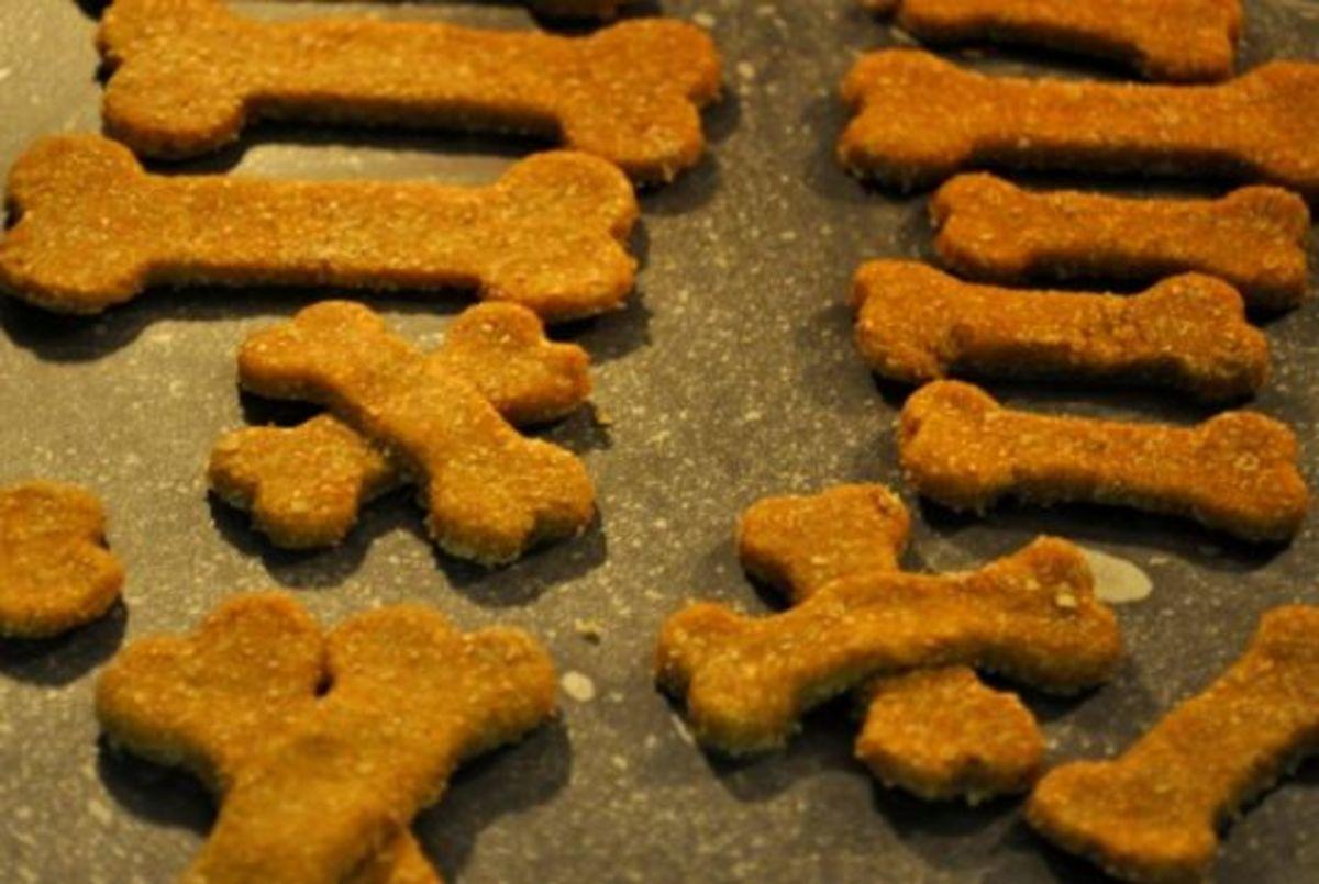 squash dog cookies