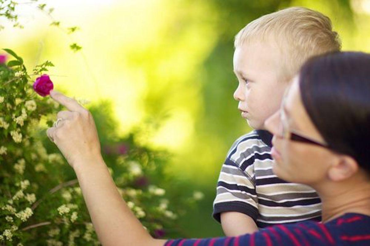 kid-garden-ccflcr-ernst-vikne