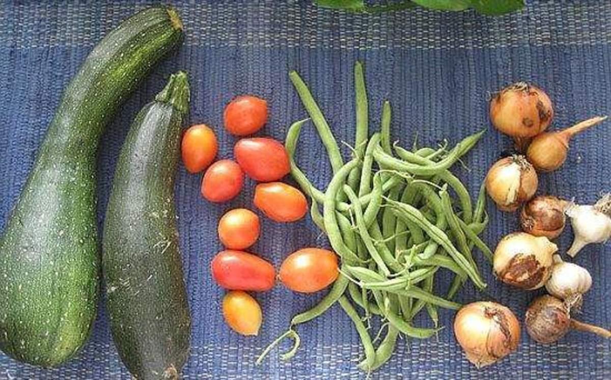 VegetablesBlueMat
