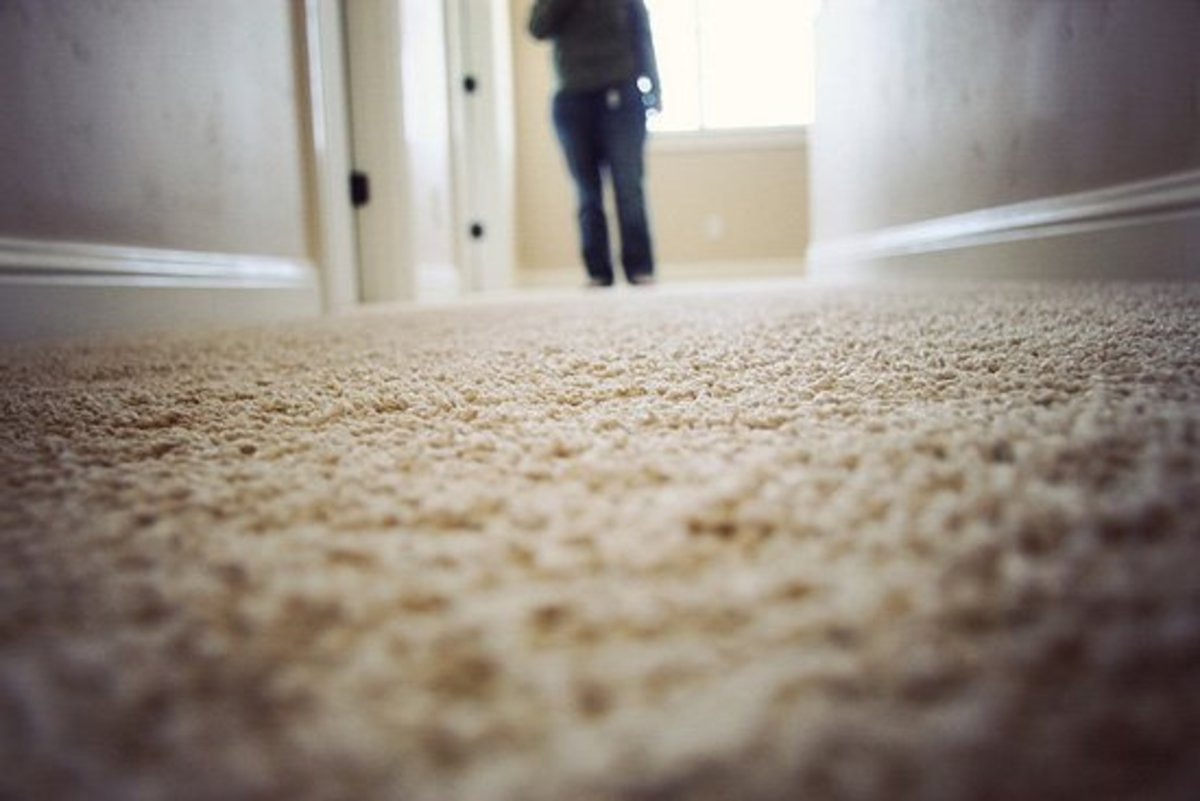 Clean carpet close-up