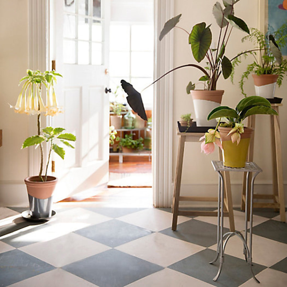 Fun indoor and outdoor planters for your space.