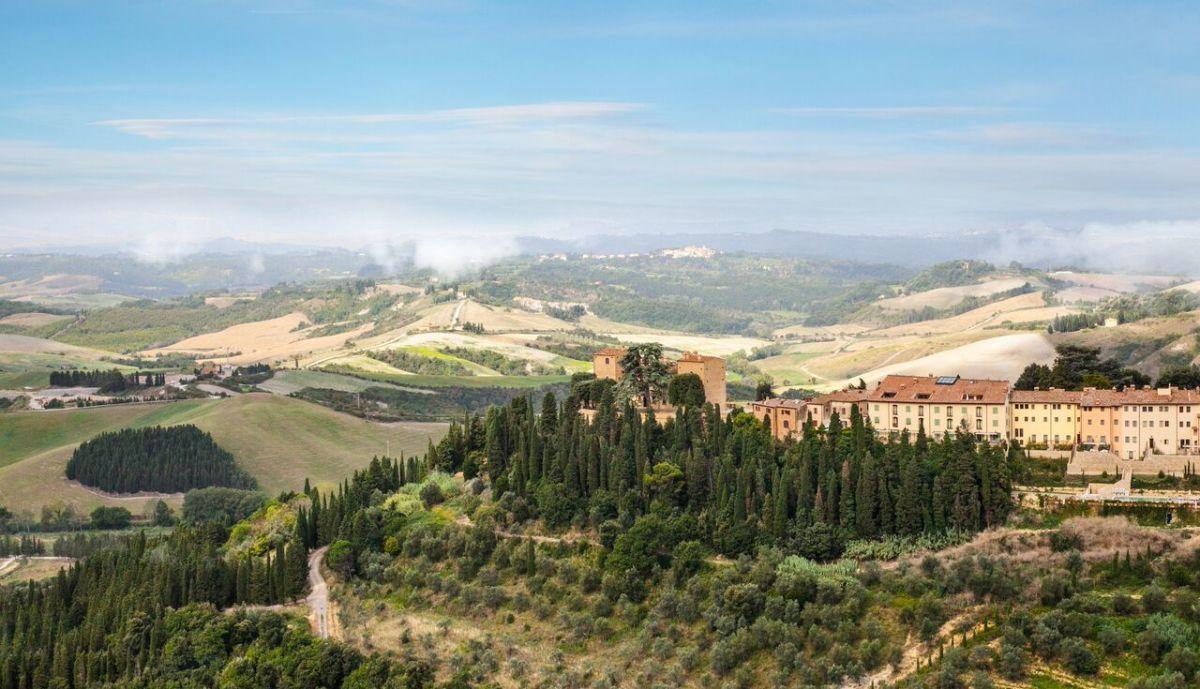 Organic Wine at Castelfalfi, Italy