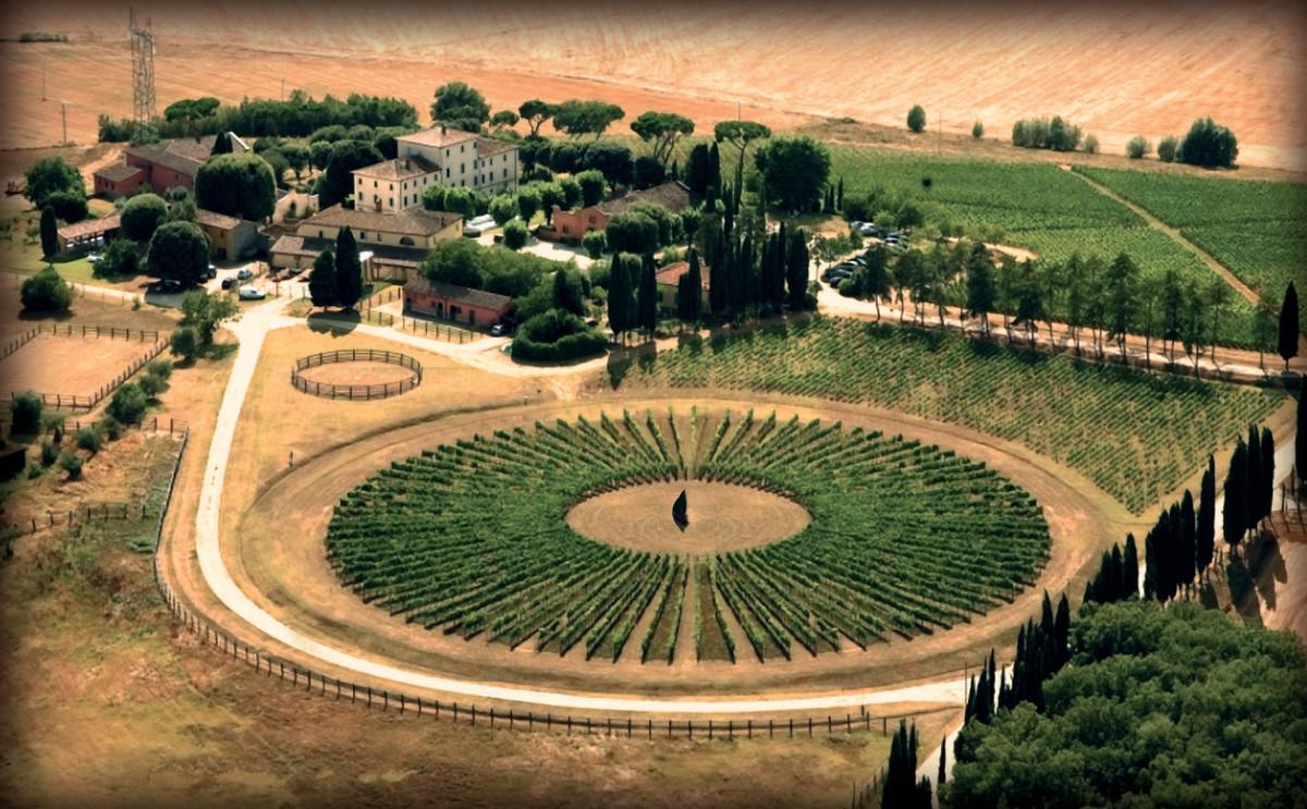 Organic Wine in Tuscany at Avignonesi