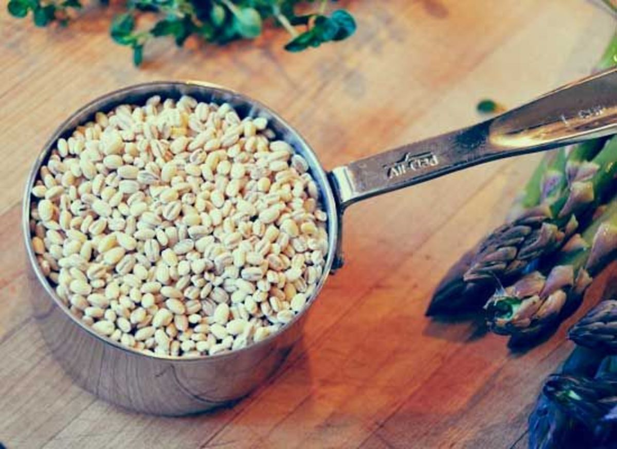 barley-john-klein