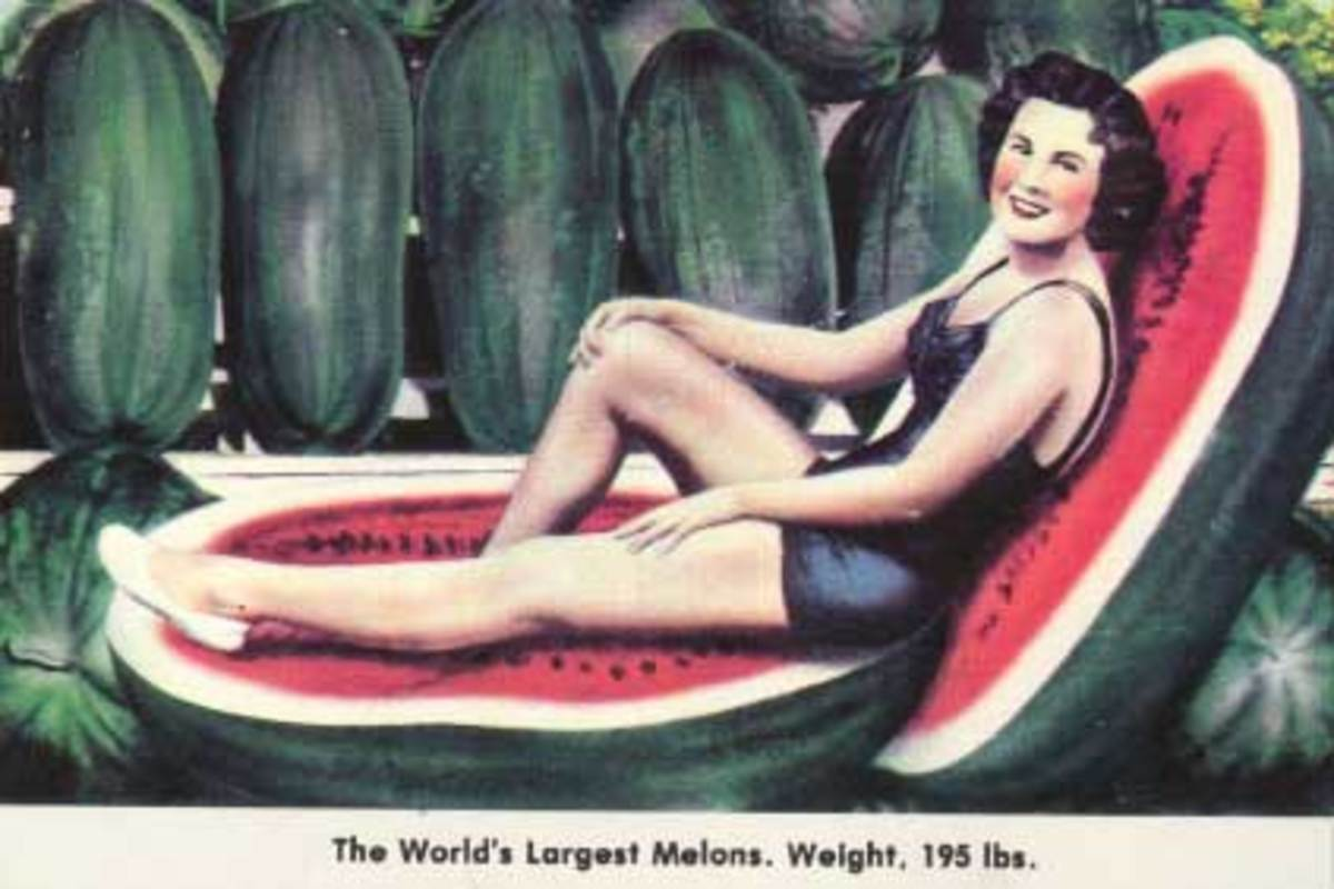 largest_melons_full