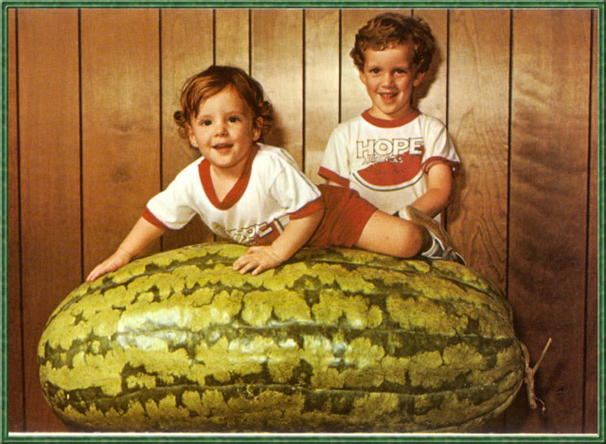 giant_watermelon