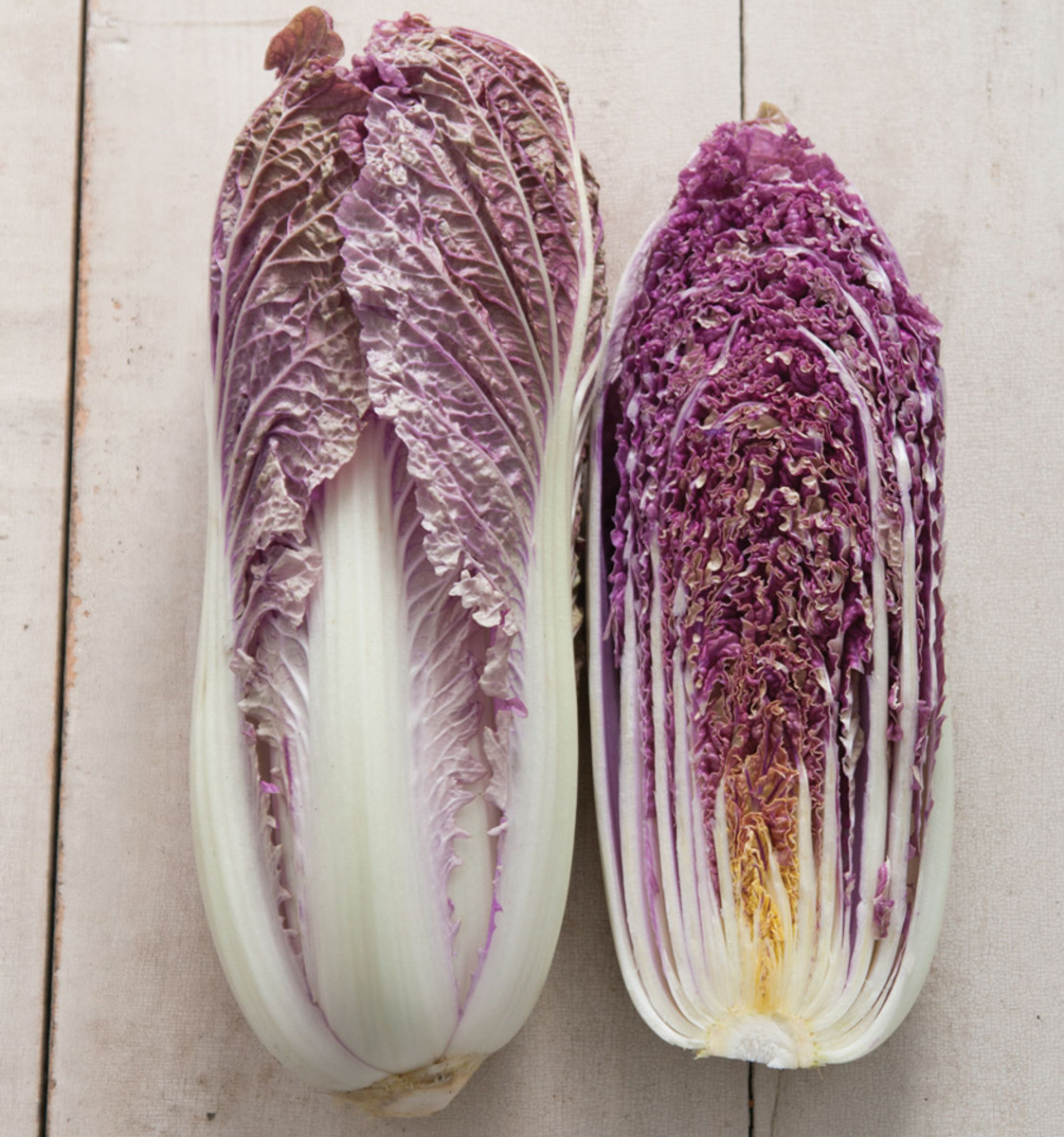 Red_Dragon_Cabbage_Johnny_Seeds