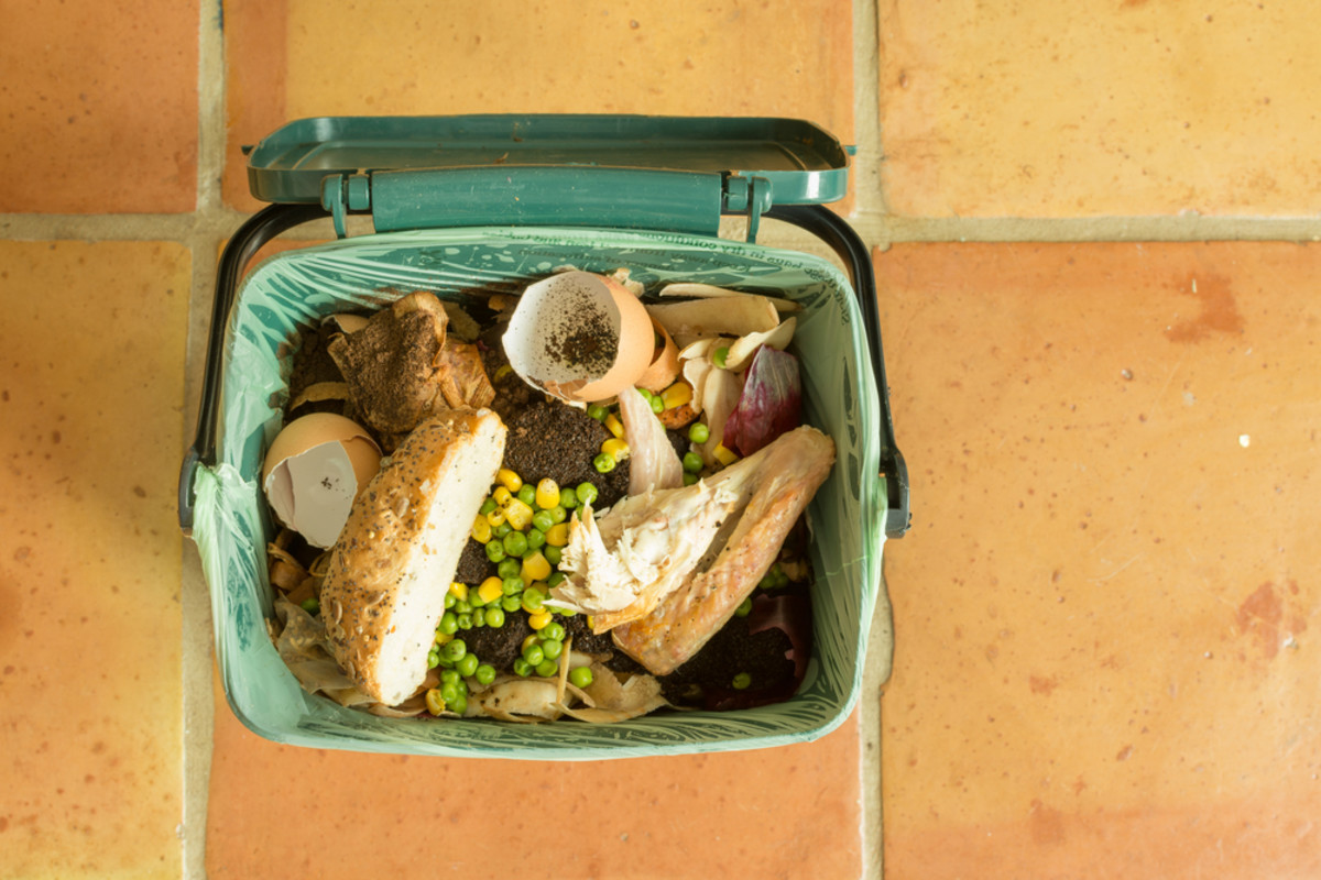 4 Startups Solving America's Food Waste Problem