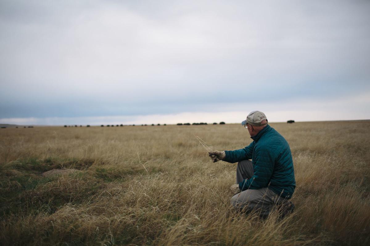 Dan O'Brien in the prairie