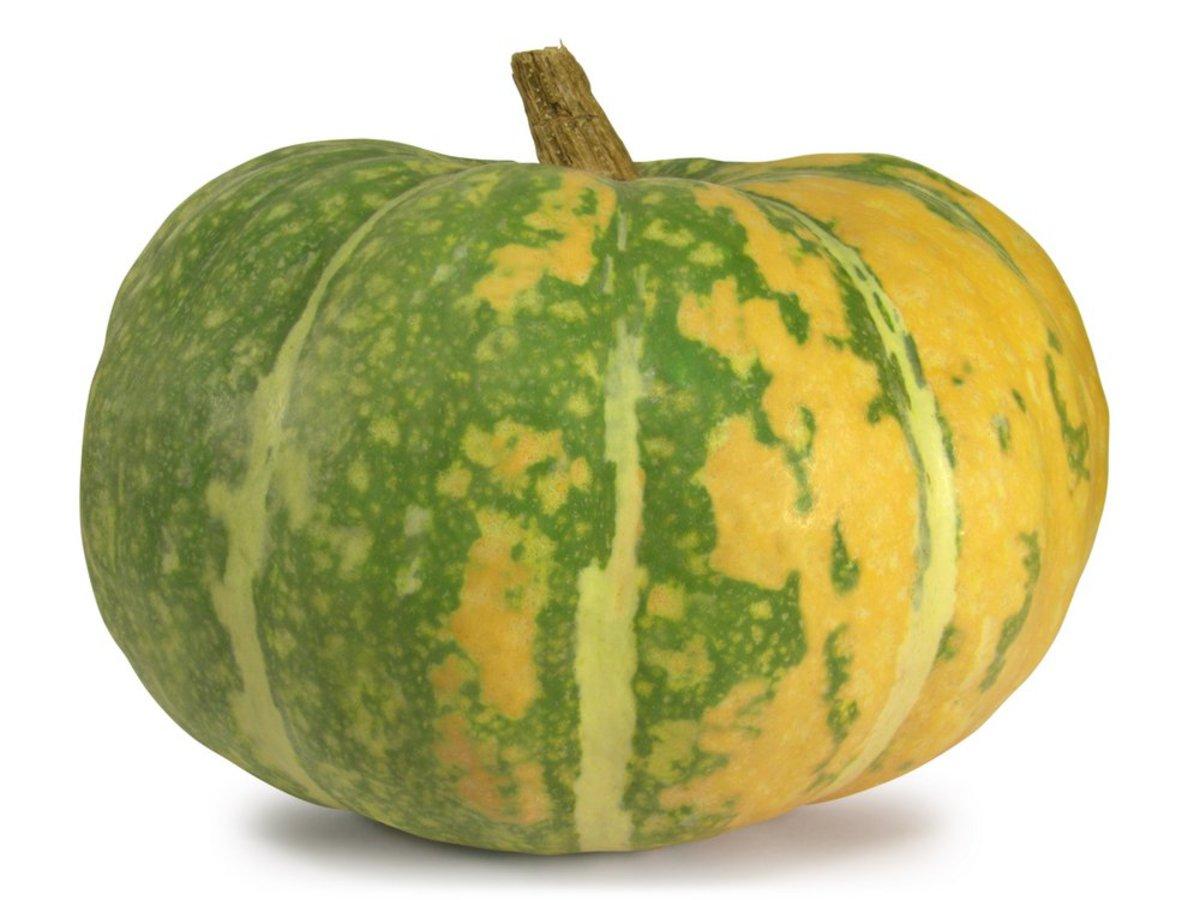 iran pumpkin