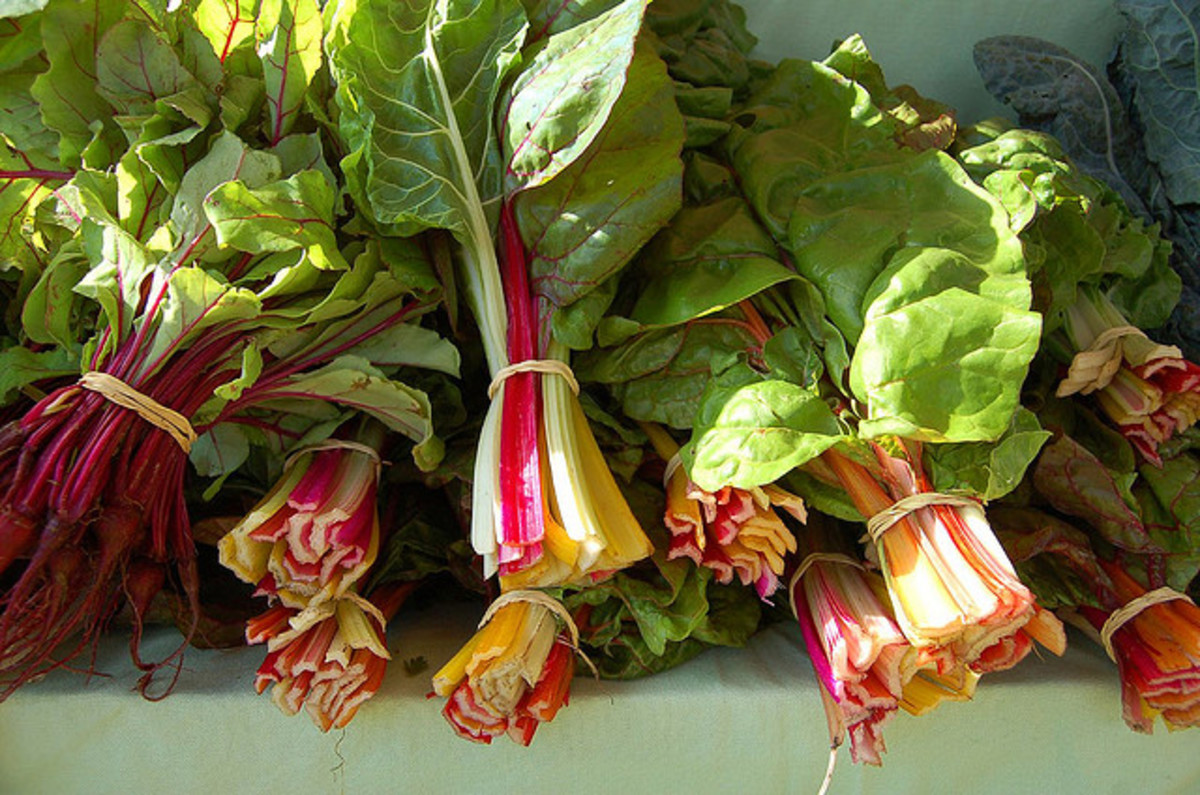 high protein foods swiss chard