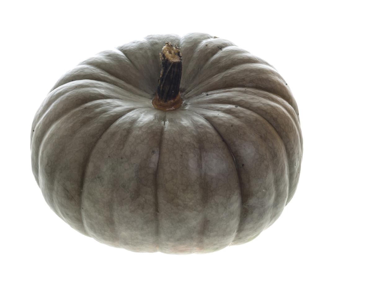 jarrahdale pumpkin image