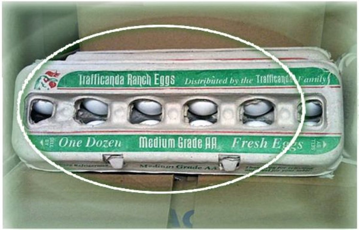 Trafficanda Eggs Part of Latest Recall