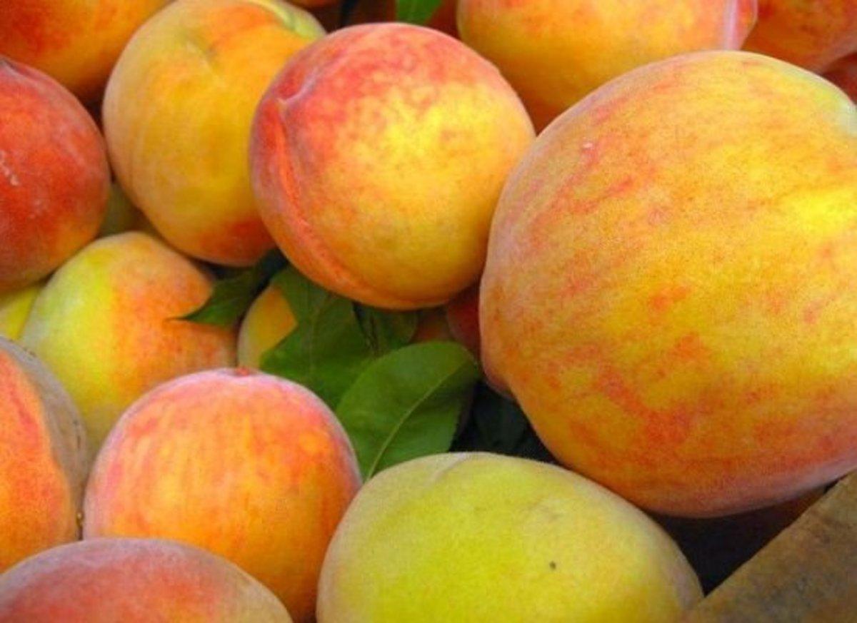 peaches-adactio