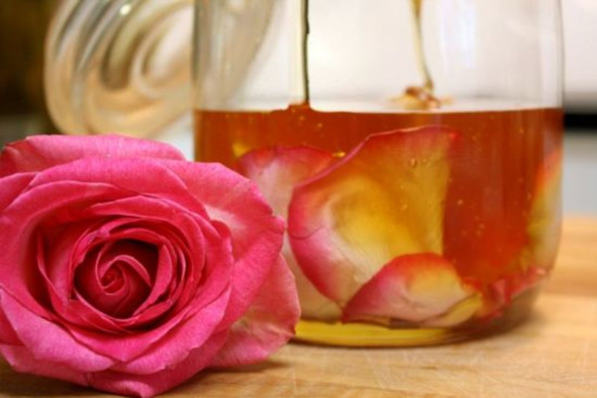 Rose Petal Honey 8 by Kimberley Stakal