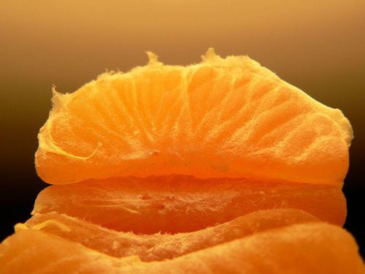 mandarin-ccflcr-kaibara87