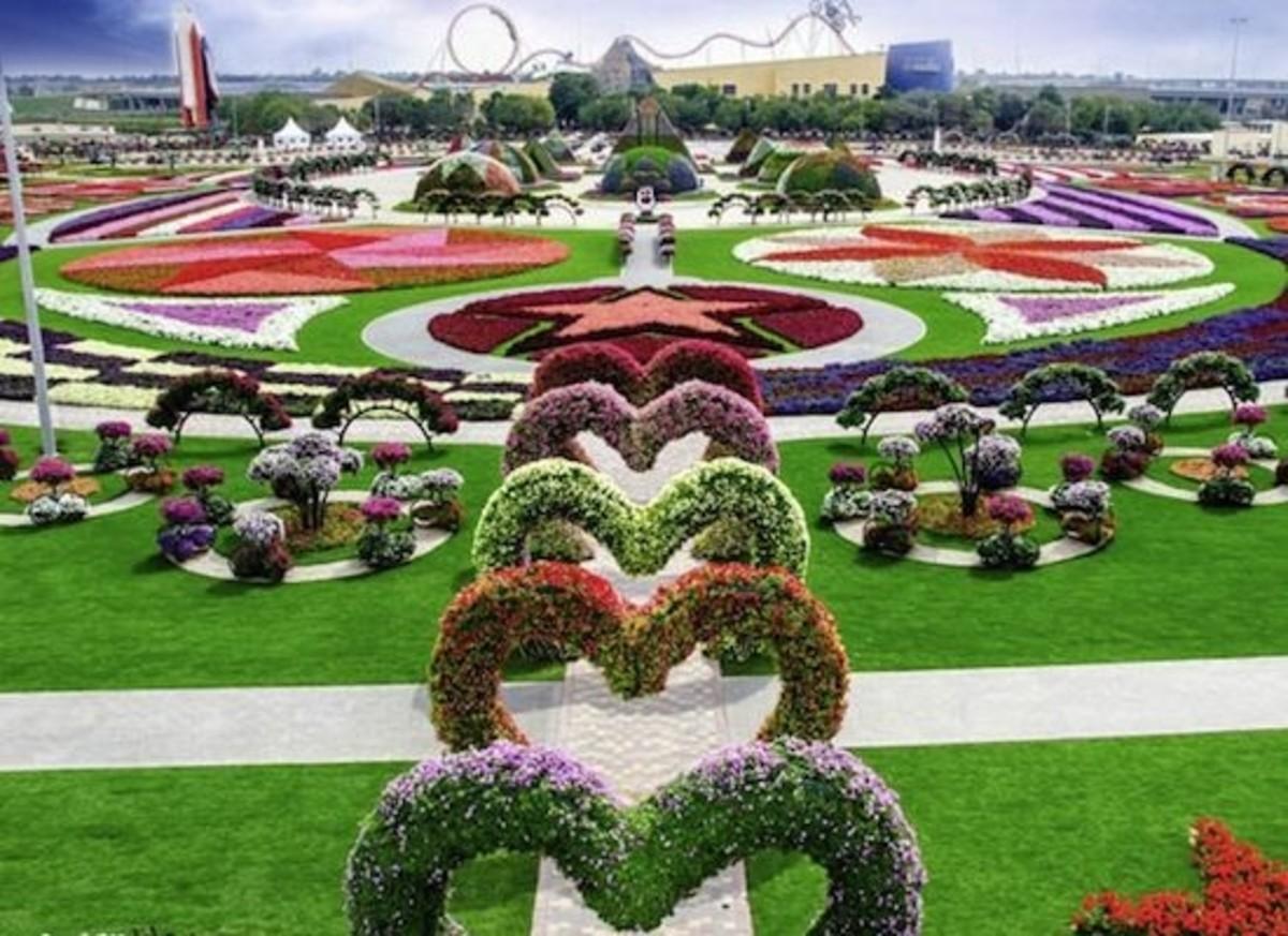 dubai-miracle-garden-1