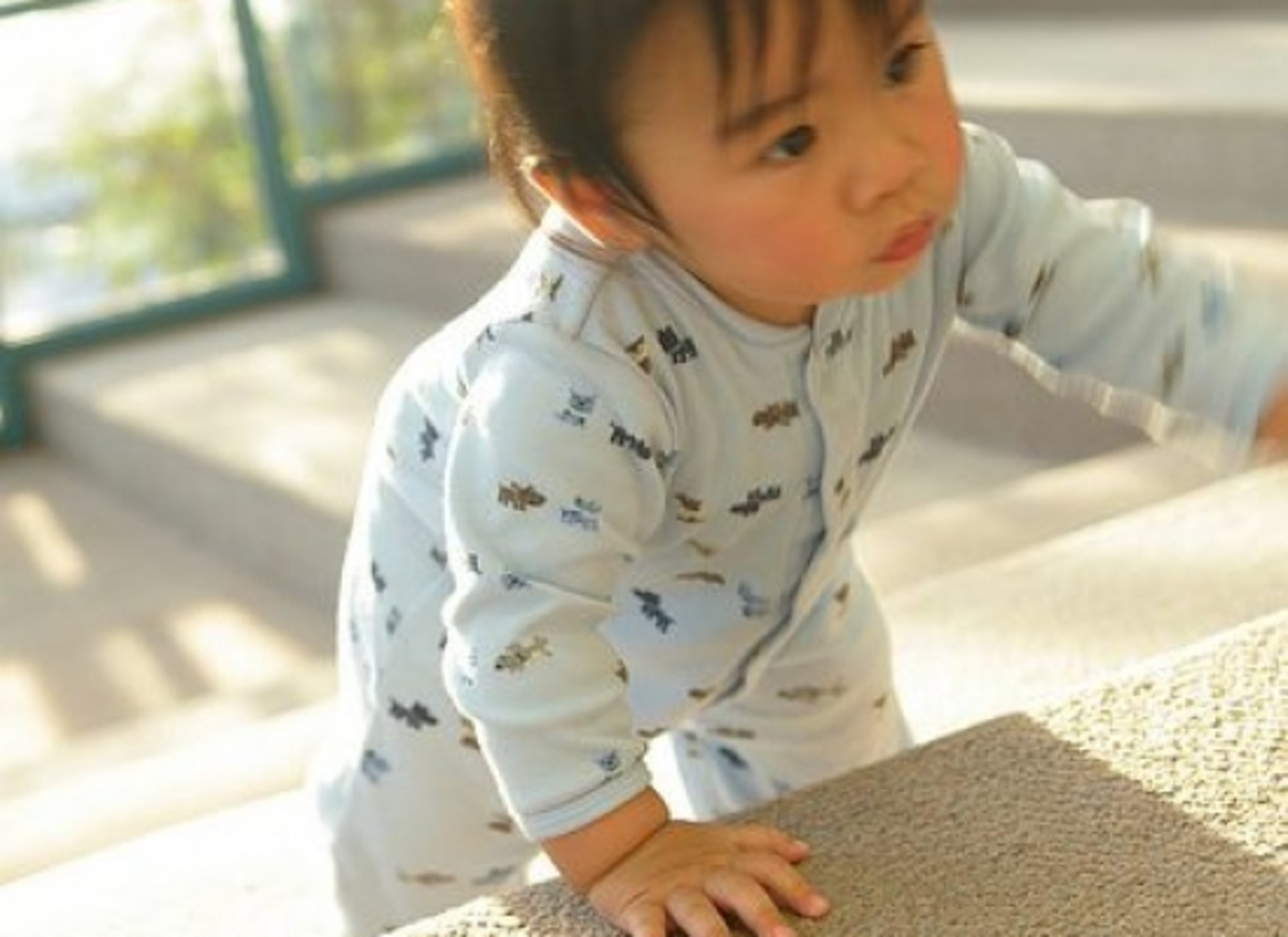 carpet-ccflcr-koadmunkee