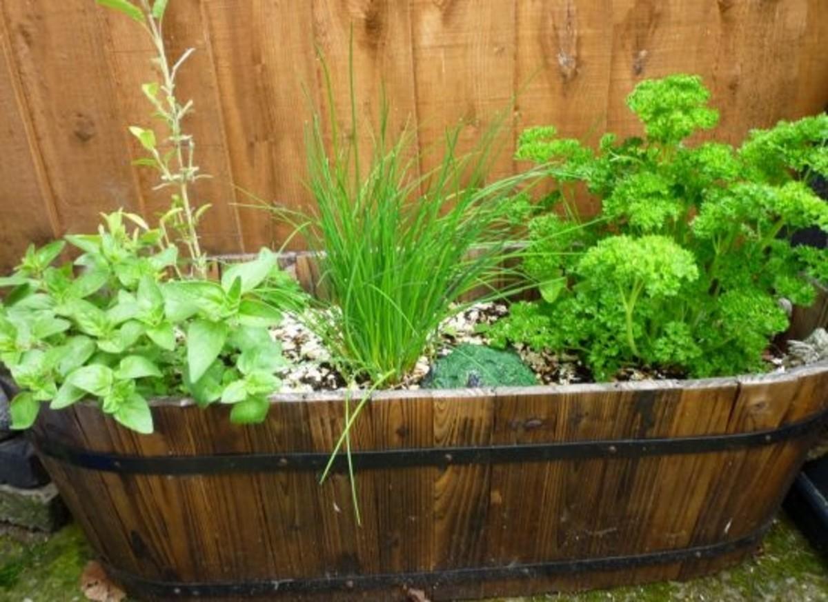 herbs-ccflcr-katemonkey