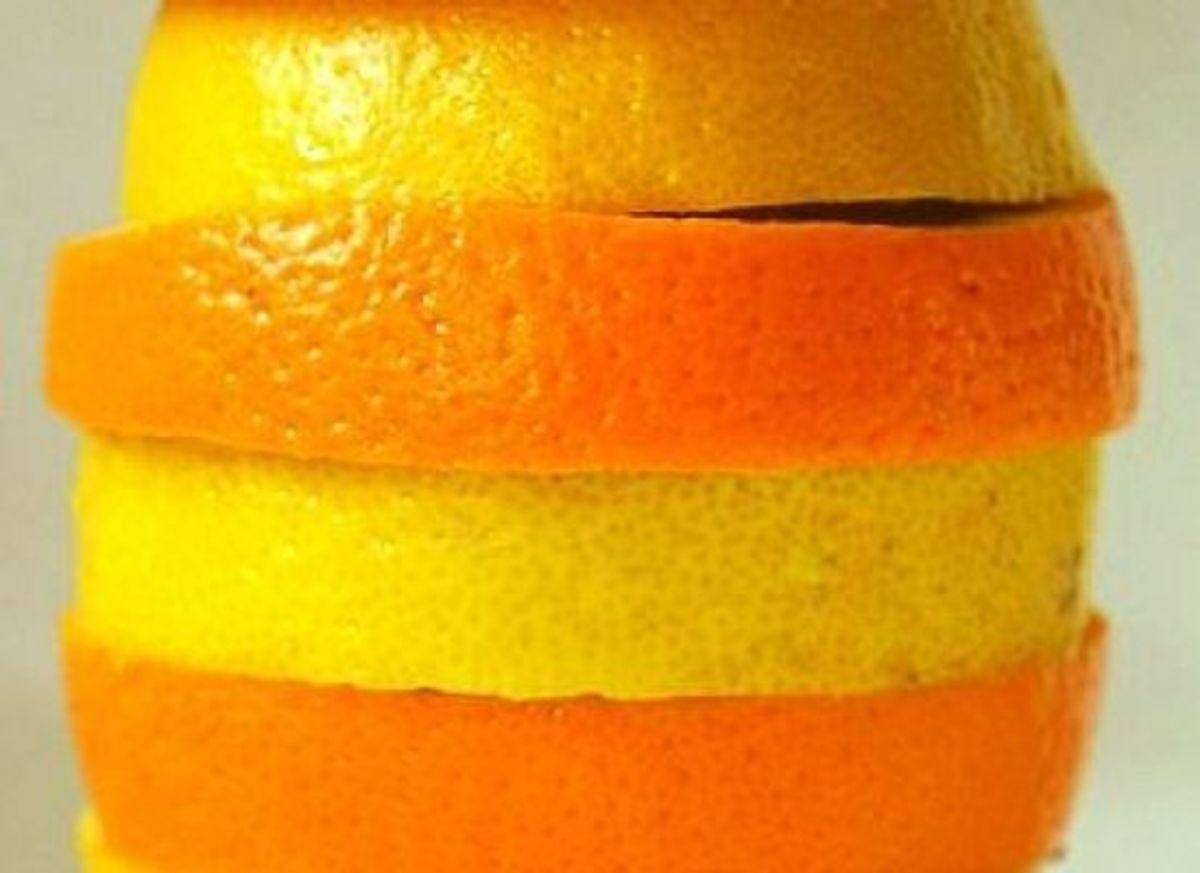 citruspeels-ccflcr-NinaMatthewsPhotography