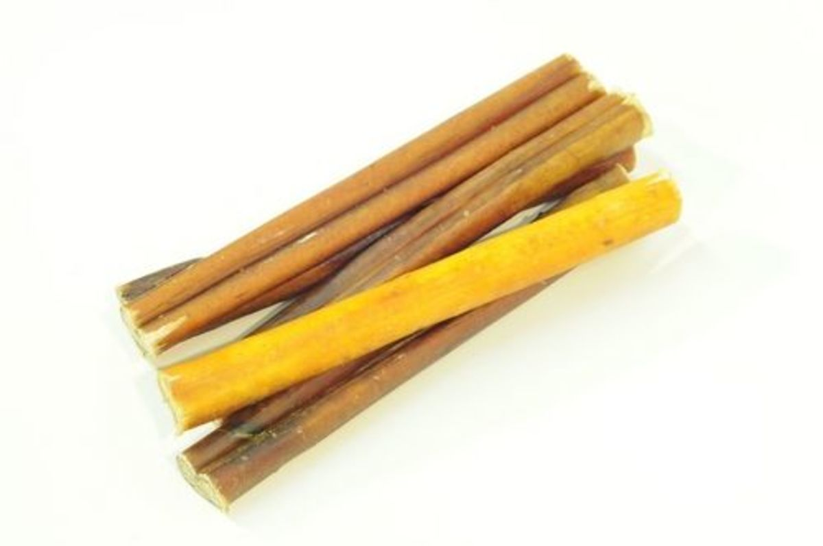 with bully sticks your pup can chew in safety organic authority. Black Bedroom Furniture Sets. Home Design Ideas