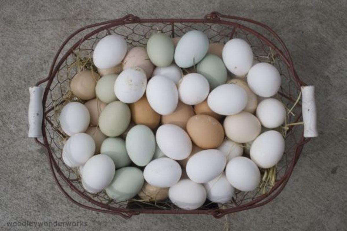 eggs-ccflcr-woodlywonderworks
