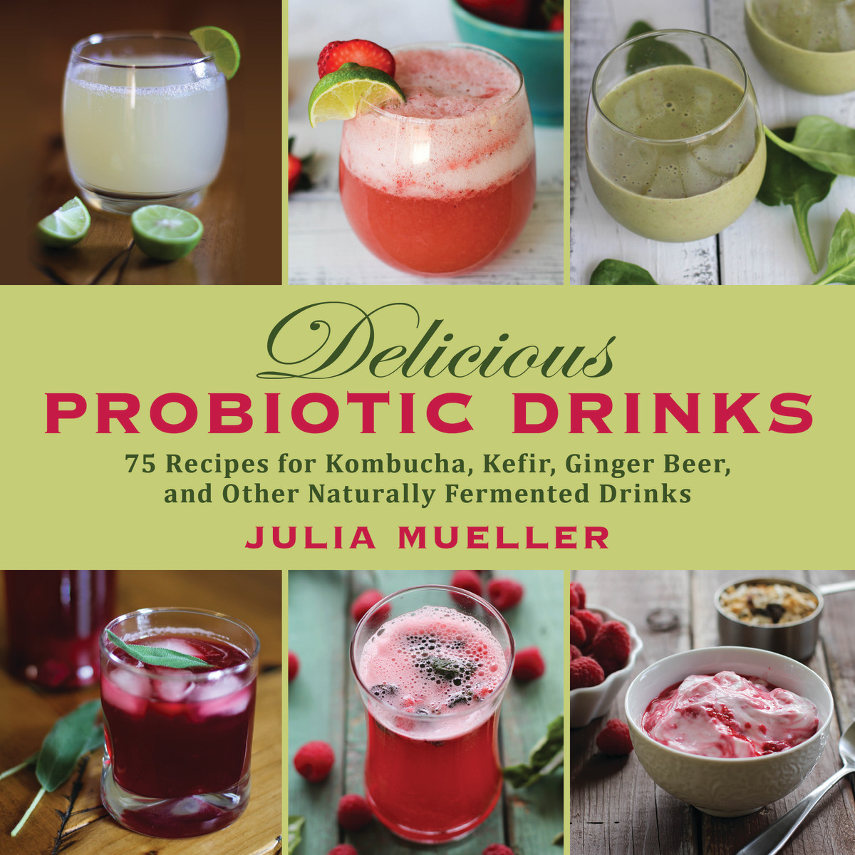 Delicious Probiotic Drinks by Julia Mueller